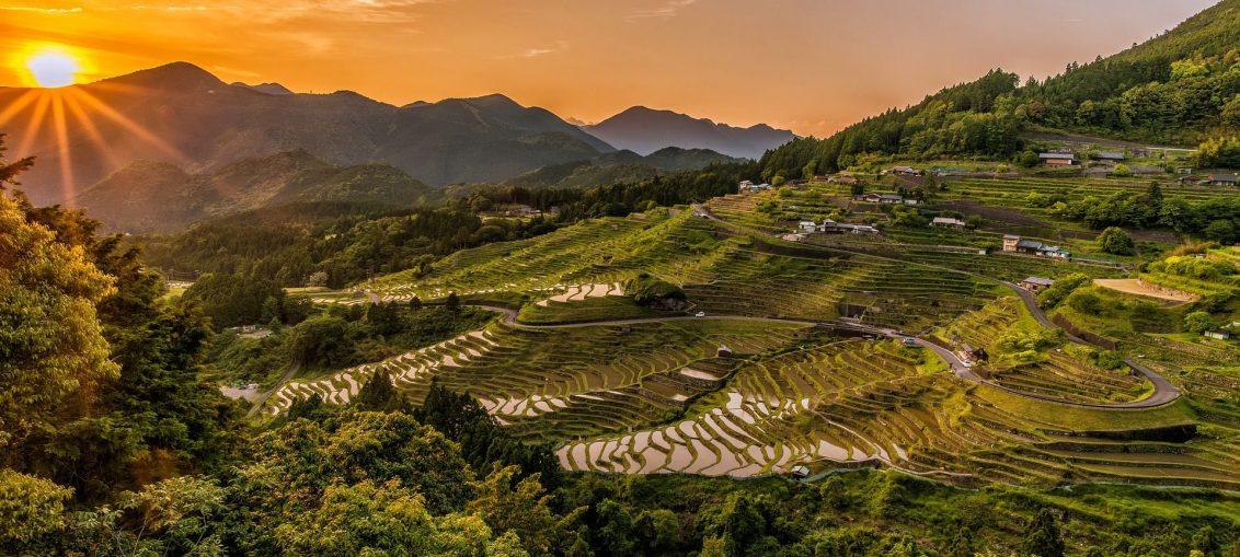 Drogi ryżowe w Azji